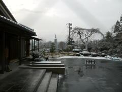初雪 到来 _a0274383_9174490.jpg