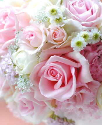 12/23(日)生花*砂糖菓子みたいなバラのリース ワンデイレッスン開催します!_a0115684_157221.jpg