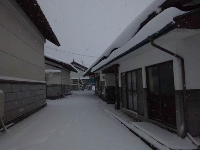 根雪_d0099708_2011211.jpg