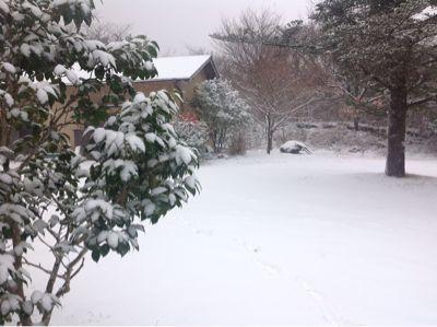積雪中_e0179508_9525231.jpg