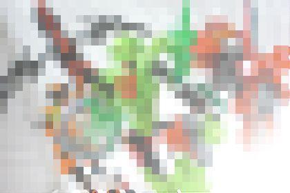 b0188713_1105079.jpg