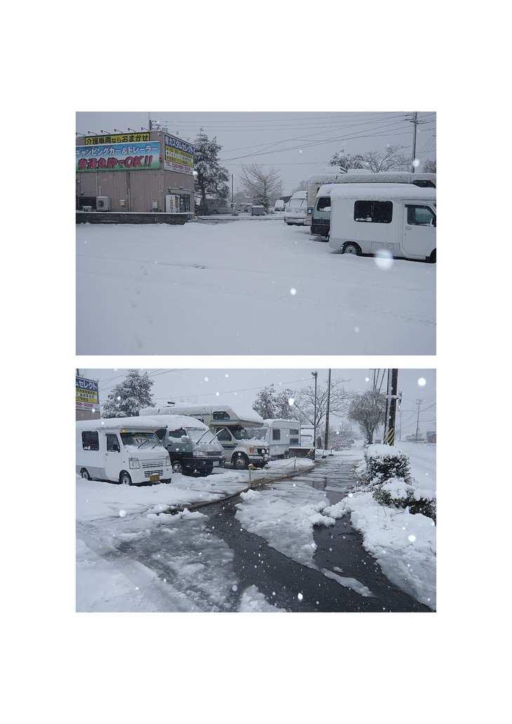ついに(  ゚ ▽ ゚ ;) 雪・・・ユキ!!_e0225148_10385384.jpg