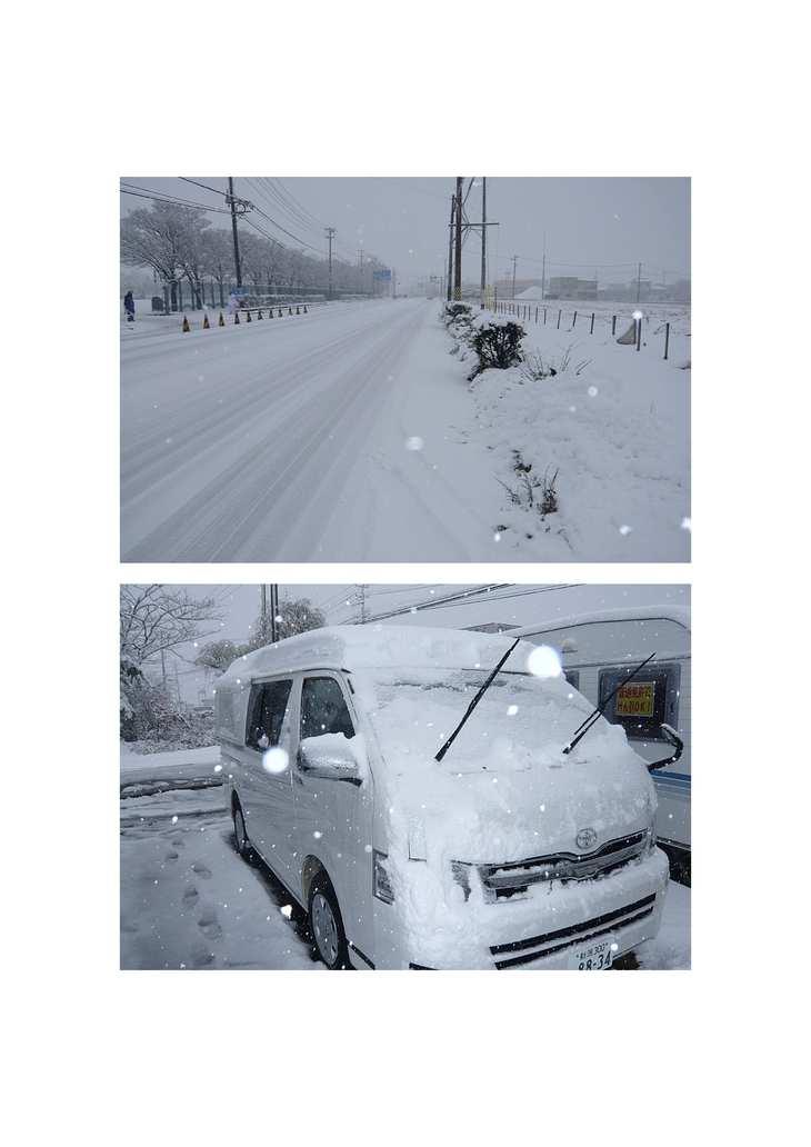 ついに(  ゚ ▽ ゚ ;) 雪・・・ユキ!!_e0225148_10395575.jpg