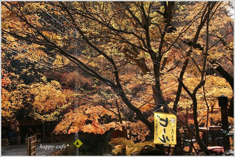 昇仙峡の紅葉 ~御岳昇仙峡4 ...