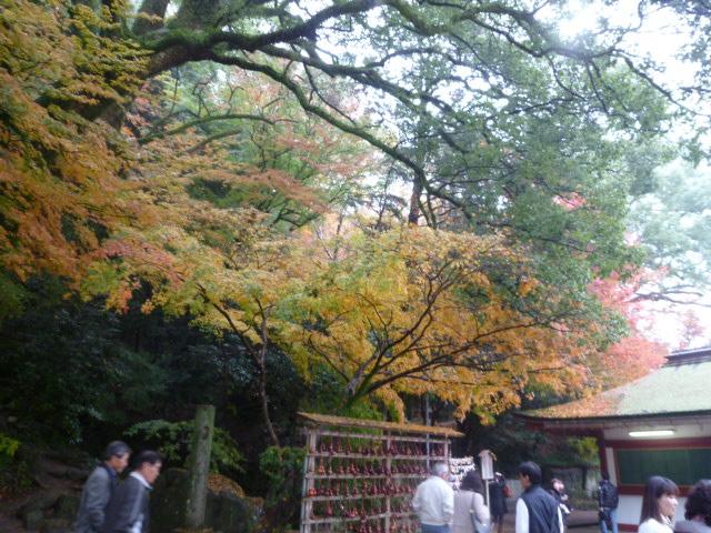太宰府散歩♪ つづき_c0100865_15125921.jpg