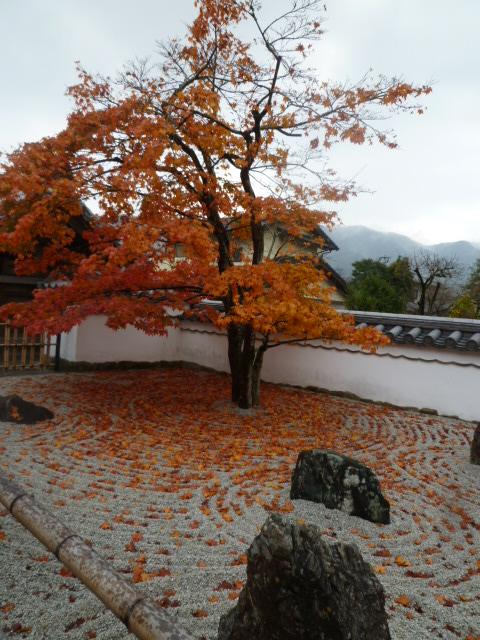 太宰府散歩♪ つづき_c0100865_15163927.jpg