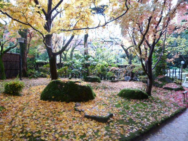 太宰府散歩♪ つづき_c0100865_15201531.jpg
