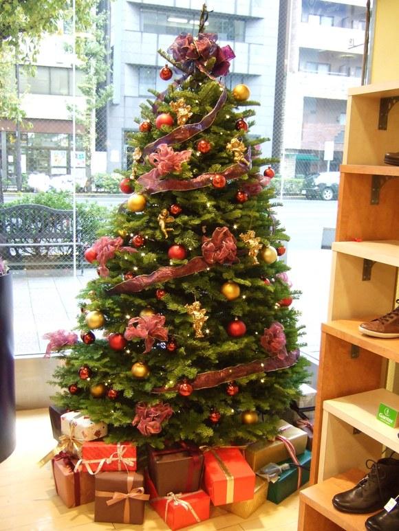 クリスマスツリー_b0206384_90376.jpg