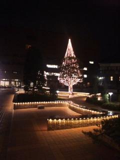 クリスマスツリー_d0005807_8523484.jpg