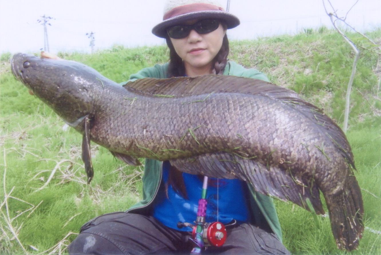 エントリーの魚から  (その3) _a0153216_22435999.jpg