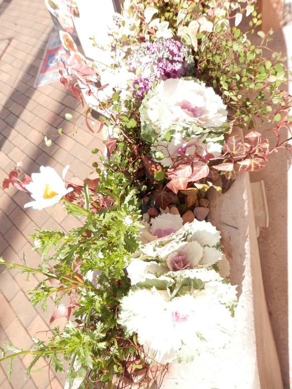 自然農「柚子シャーベット」と「お歳暮」作り☆_a0125419_18393822.jpg