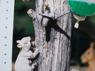 動物園アルバム&消しゴムハンコに挑戦!_d0189735_1146034.jpg