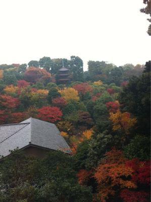 121210 京都⁈_f0164842_22423161.jpg