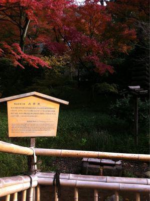 121210 京都⁈_f0164842_22432236.jpg