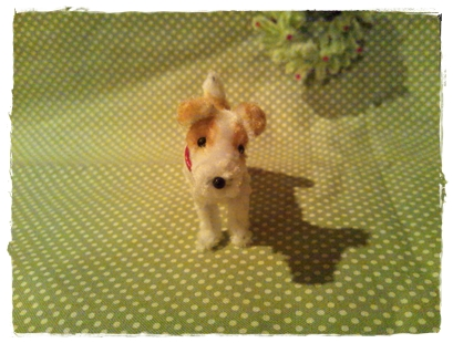 ジャックラッセルテリア Jack Russell terrier smooth-coated_a0205848_21302383.jpg