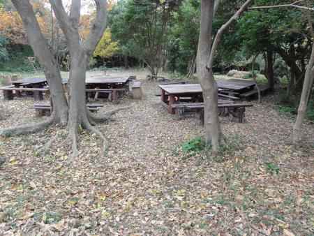 H24年12月度うみべの森を育てる会運営委員会_c0108460_1750236.jpg