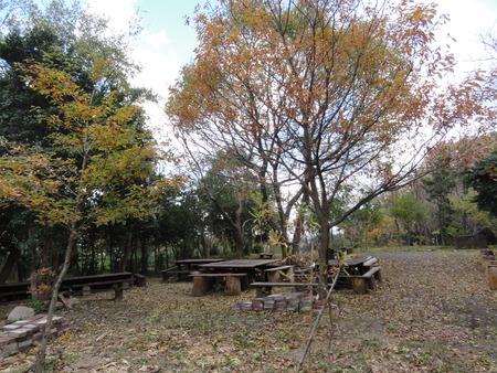 H24年12月度うみべの森を育てる会運営委員会_c0108460_17511061.jpg