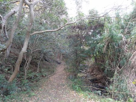 H24年12月度うみべの森を育てる会運営委員会_c0108460_17514580.jpg