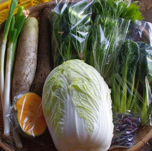 今週の野菜セット(12/11~12/15着) _c0110869_22391499.jpg