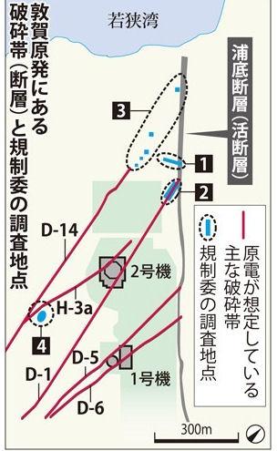 敦賀原発の直下に活断層がありそうだ_d0183174_20191483.jpg