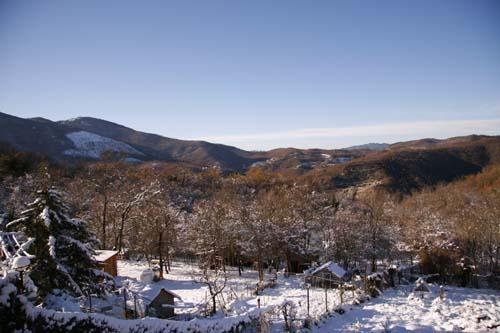 雪と山暮らし_f0106597_23433256.jpg