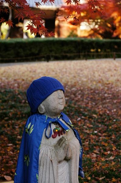 鎌倉 明月院の紅葉が見頃でした_b0145398_03009.jpg