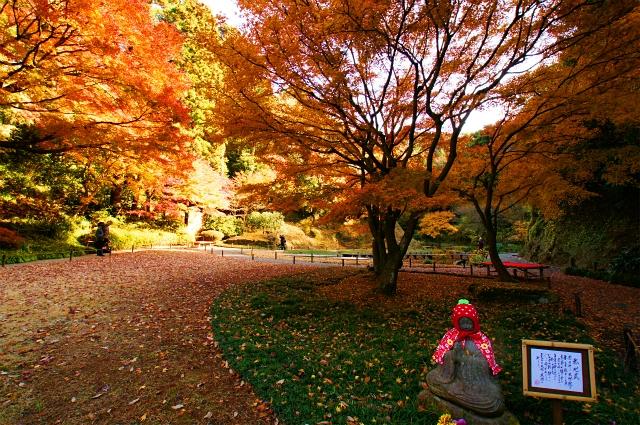 鎌倉 明月院の紅葉が見頃でした_b0145398_0312518.jpg