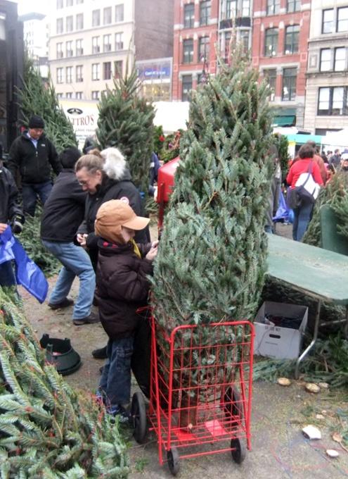 ニューヨークの青空市場にも近づくクリスマス_b0007805_10183529.jpg