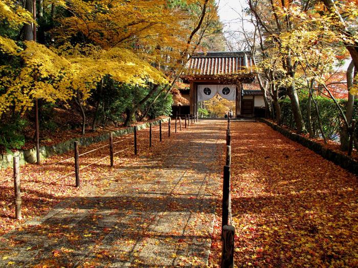 初冬 神戸・京都の旅(二日目)_d0150720_13525984.jpg