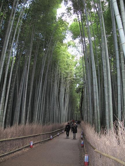 初冬 神戸・京都の旅(二日目)_d0150720_13542241.jpg