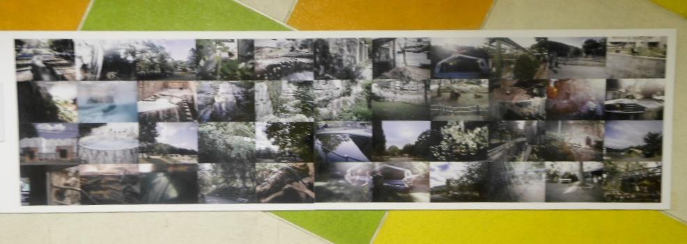 1911)「円山動物園アートアニュアル アニマルフォトストリート」地下鉄円山 11月19日(月)~3月31日(日)_f0126829_024287.jpg