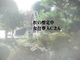 f0031037_20163178.jpg