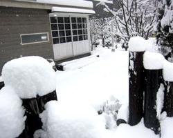 雪国 安曇野_d0050155_858045.jpg