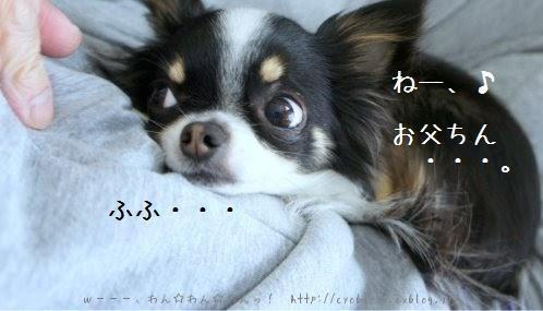 b0112758_19552143.jpg