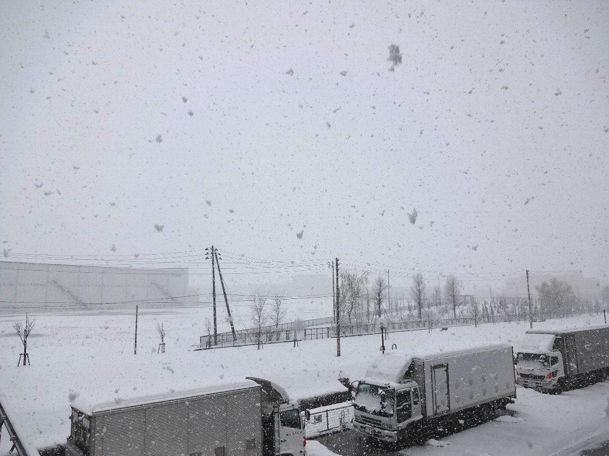 2日連続の大雪_e0266363_108190.jpg