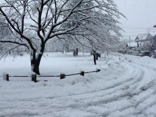 2日連続の大雪_e0266363_946526.jpg