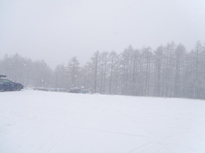 今シーズン初滑り_e0292469_15221046.jpg