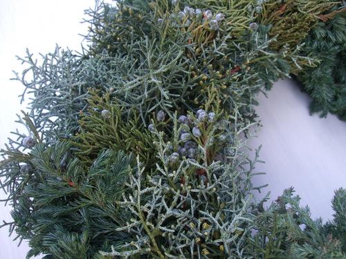 オークリーフ(クリスマスのオーダーリース)_f0049672_16145821.jpg