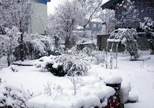 雪がモサモサ降り積もり~^^_a0136293_17554637.jpg