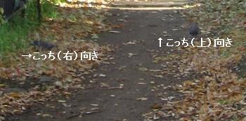 c0204298_18103611.jpg