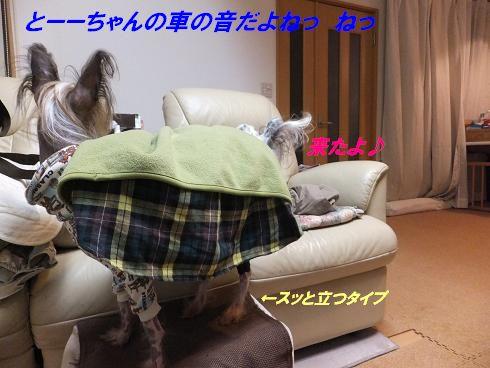 f0179203_8115364.jpg