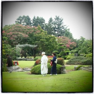 和装に合わせるヘッドドレス 白いシャクヤクをたっぷりと_b0113510_1633838.jpg