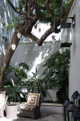 メキシコ初旅行_e0279624_1232057.jpg
