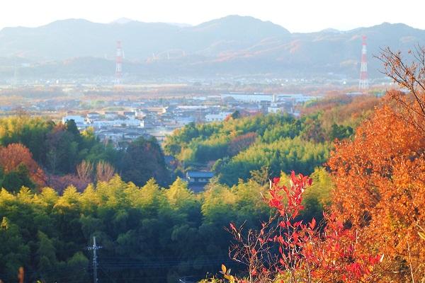 秋のなごり まだ残ってた_f0214527_9563816.jpg