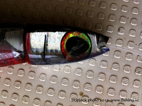 年末年始は石垣の海で、ゆるゆるの釣りはいかが??【カジキ・マグロトローリング】_f0009039_13312465.jpg