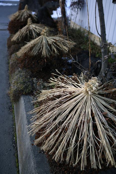 【Nagano Snapshot】 原村1 混沌こそ我が墓碑銘_c0035245_039312.jpg