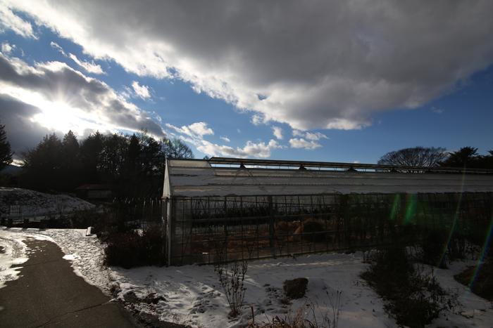 【Nagano Snapshot】 原村1 混沌こそ我が墓碑銘_c0035245_2312725.jpg