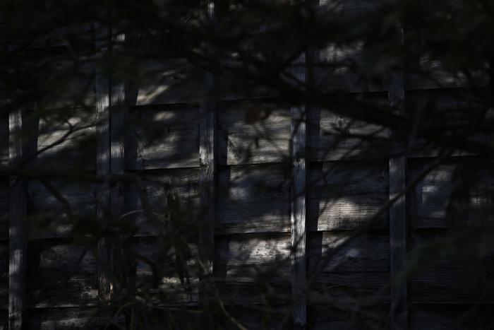 【Nagano Snapshot】 原村1 混沌こそ我が墓碑銘_c0035245_31019.jpg