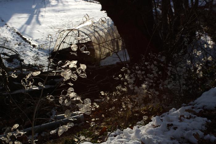 【Nagano Snapshot】 原村1 混沌こそ我が墓碑銘_c0035245_3104591.jpg