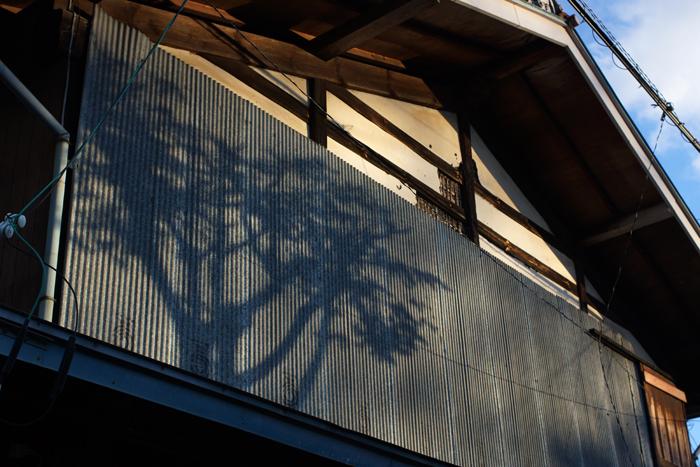 【Nagano Snapshot】 原村1 混沌こそ我が墓碑銘_c0035245_3194288.jpg